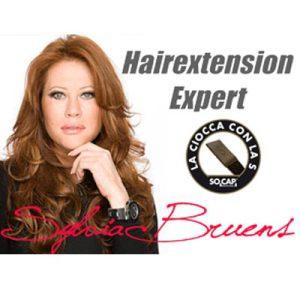 online-prive-cursus-sylvia-bruens-extensions-hairextensions